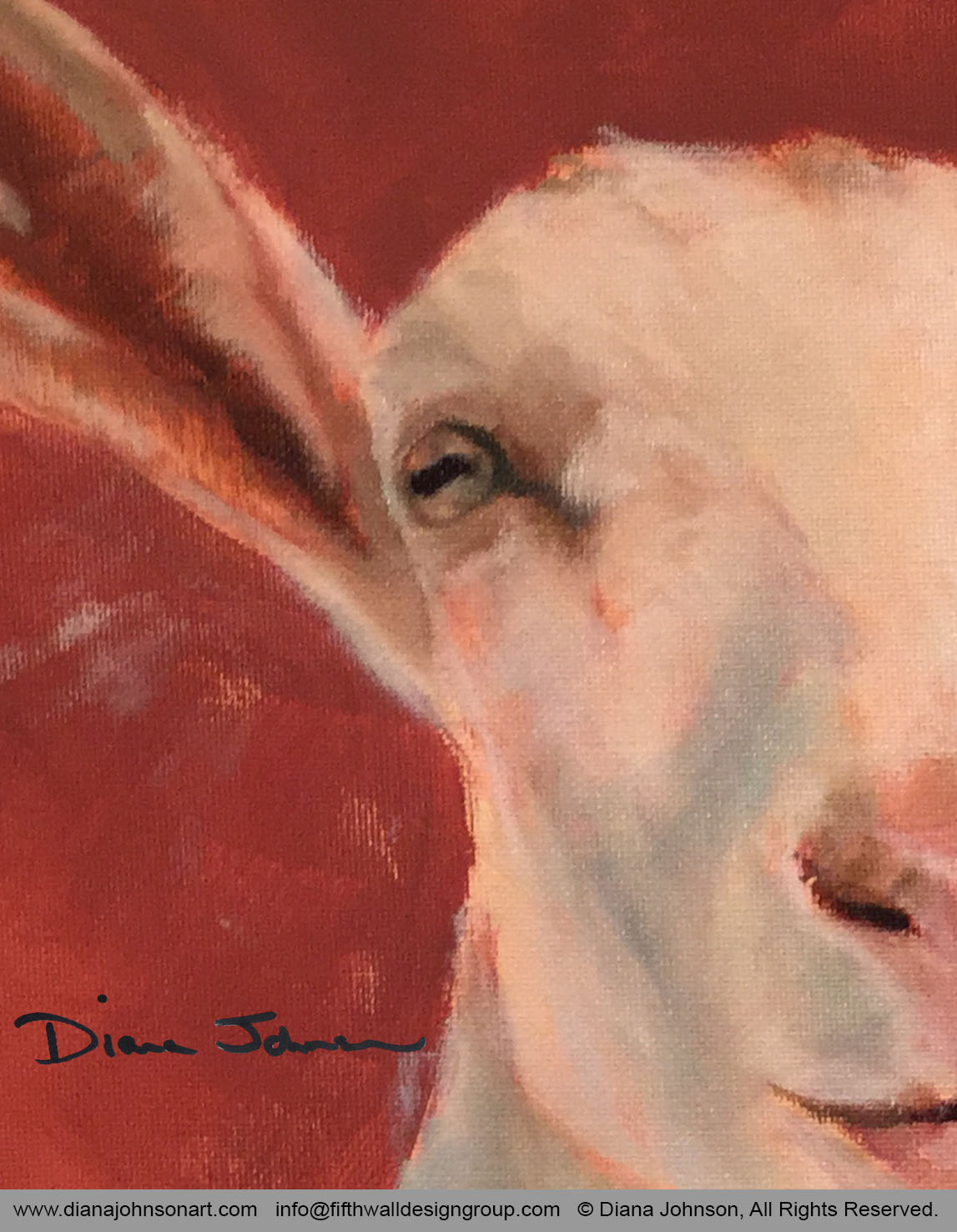 Happy Goat, underpainting, detail by Diana Johnson